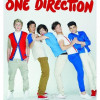 Calendario One Direction 2013