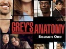 Todo sobre Anatomía de Grey