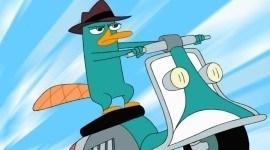 Perry de Phineas y Ferb