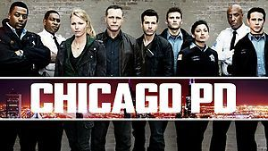 2013_0510_Chicagopd_ST_1920x1080_GY