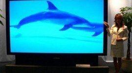120 pulgadas: La televisión más grande del mundo