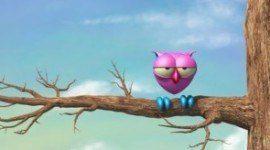 """""""The Owl"""" se verá en TVE"""
