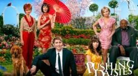 "TVE emitirá ""Pushing Daisies"" y ""Gossip Girl"""